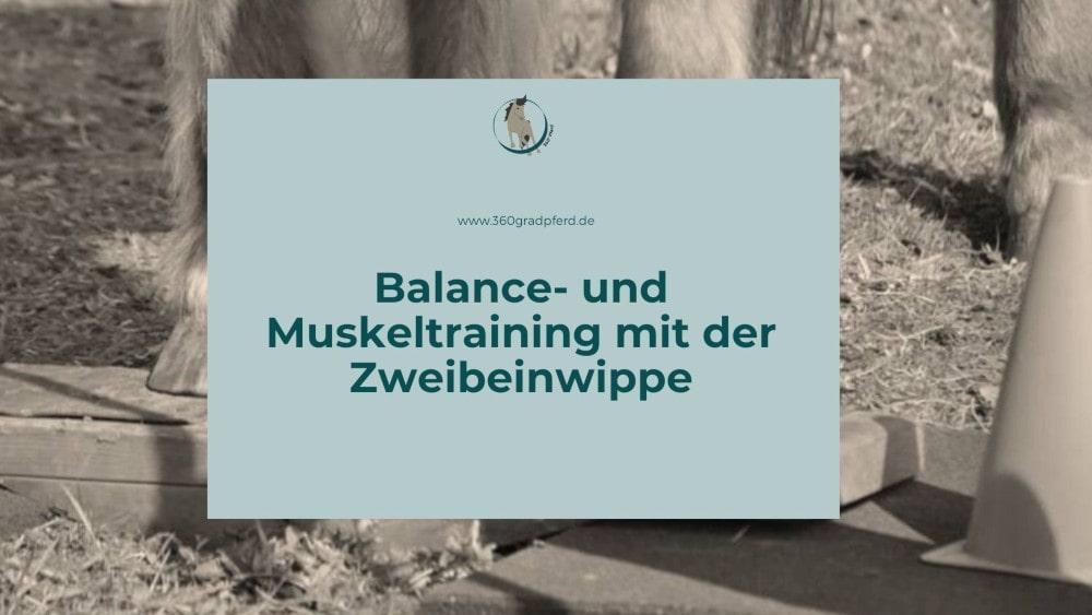 Balance- und Muskeltraining mit der Zweibeinwippe für Pferde