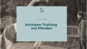 Intrinzen Training mit Pferden