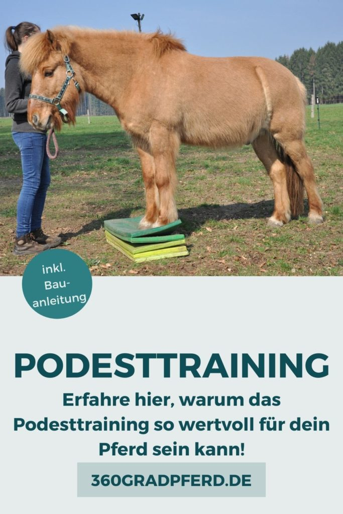 Podesttraining als sinnvolle Ergänzung für das sensomotorische Pferdetraining