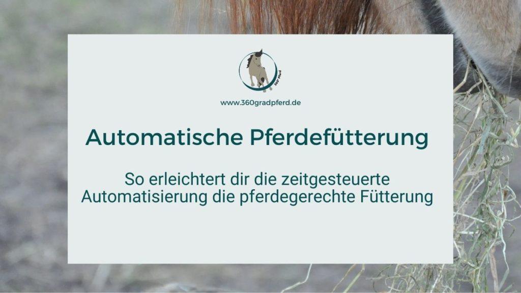 Zeitgesteuerte Automatisierung erleichtert die pferdegerechte Fütterung