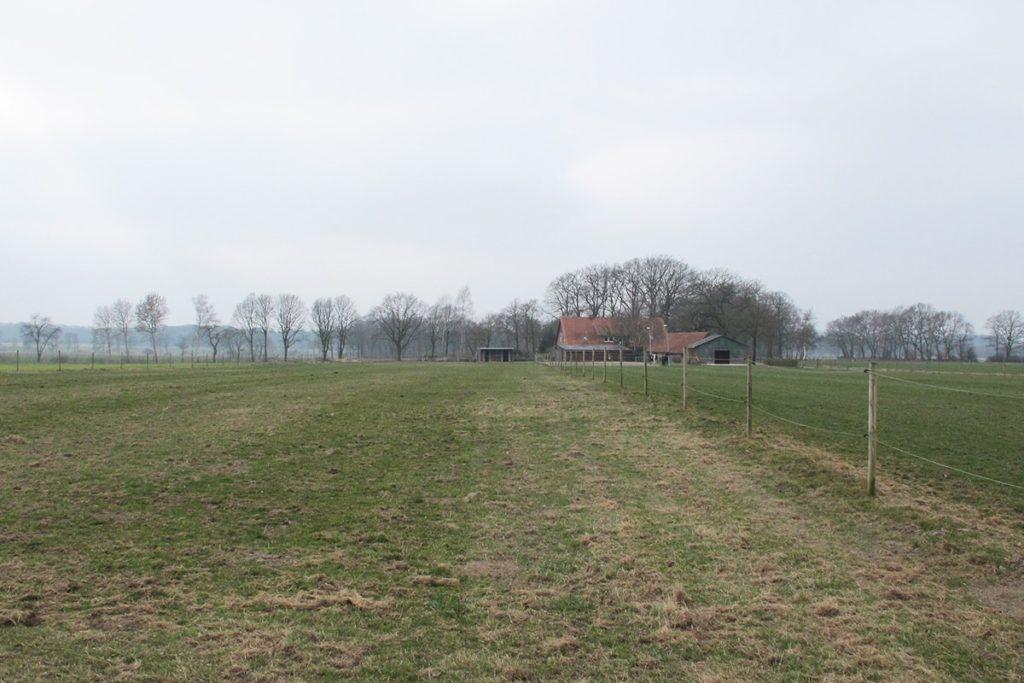 Neue Weide für Pferde
