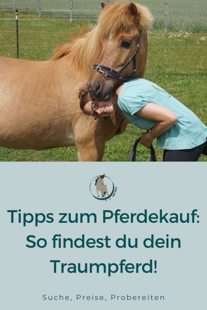 Tipps und Infos zum Pferdekauf