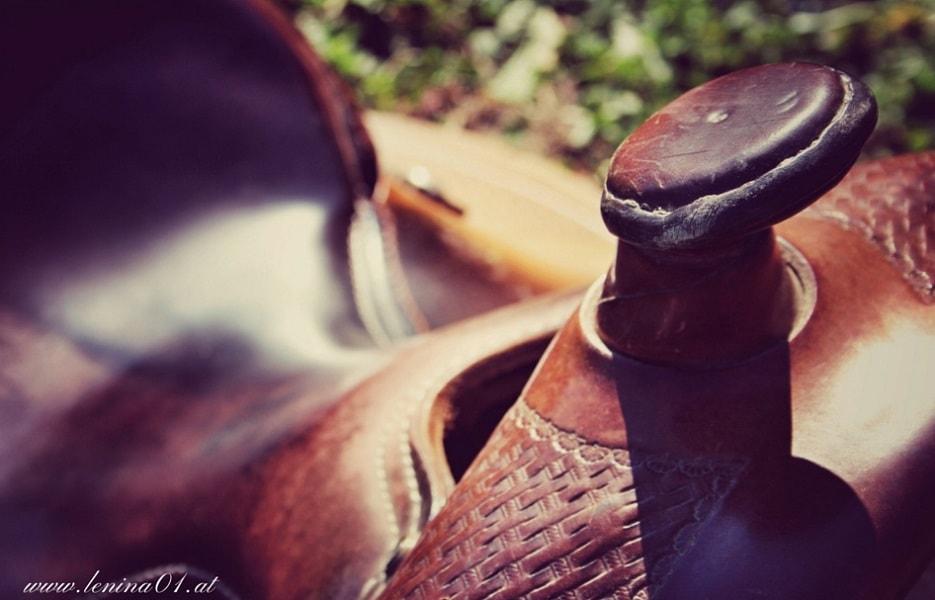 Westernreiten, Westernsattel mit Horn