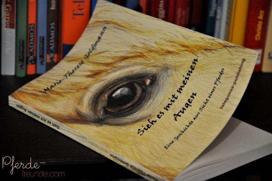 Buchcover: Sieh es mit meinen Augen von Marie-Therese Goldmann, gemaltes Pferdeauge