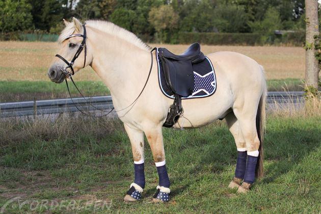 selbstgemachte Pferdesachen
