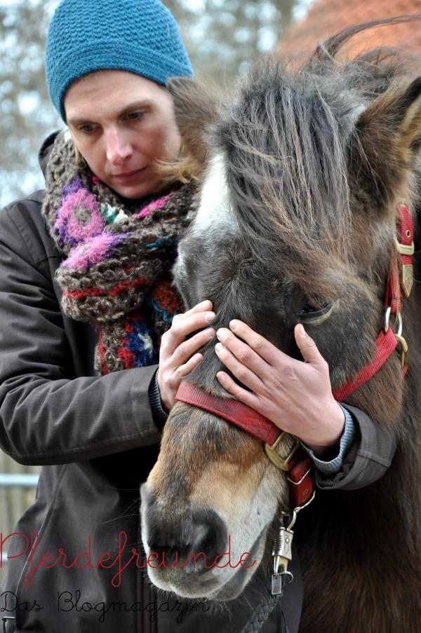 Ist die Hinterhand blockiert, läuft ein Pferd auf der Vorhand. Deswegen muss bei jeder Behandlung das Pferd als Ganzes betrachtet werden.
