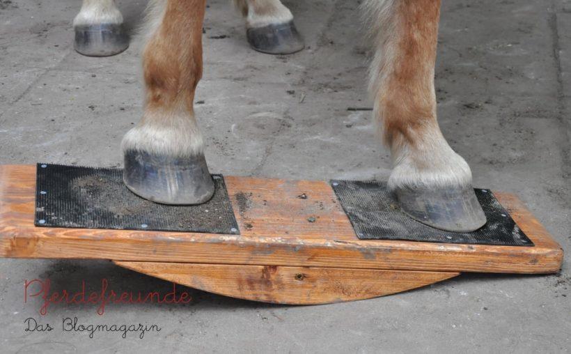 Pferdewippe Equiwip von vorne