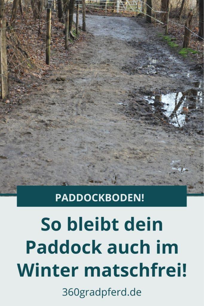 Matschfreier Paddock
