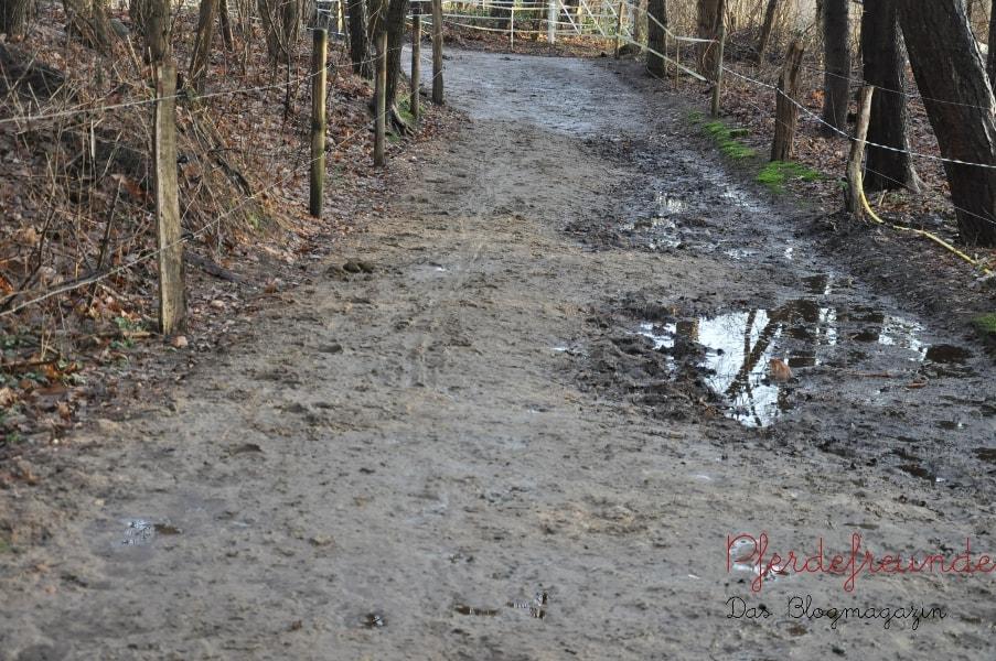 Eine Seite des Laufgangs ist trockengelegt. Die andere Seite, die tiefer liegt, (noch) nicht. Hier kann sich das Regenwasser sammeln und zur Seite hin ablaufen