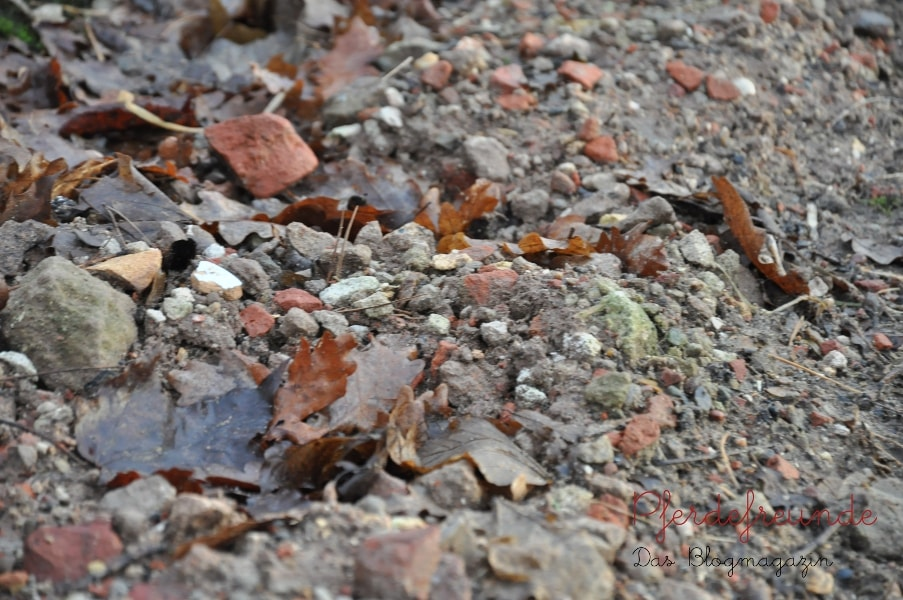Tragschicht aus grobem Schotter