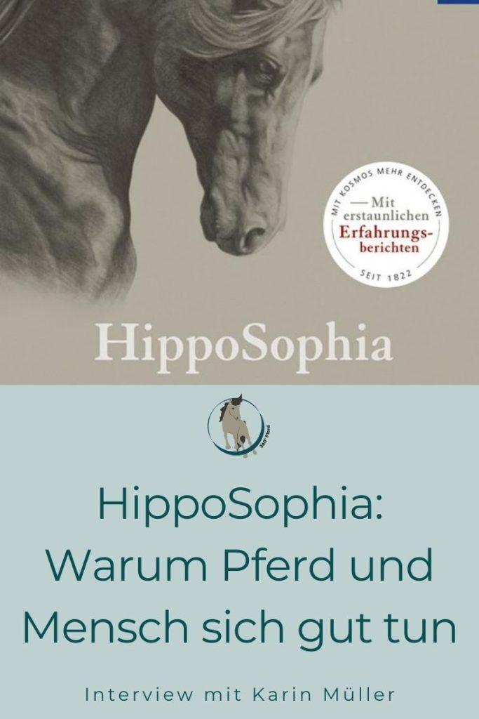 Hipposophia Warum Pferd und Mensch sich gut tun