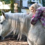 Warum Pferd und Mensch sich gut tun: Interview mit HippoSophia-Autorin Karin Müller