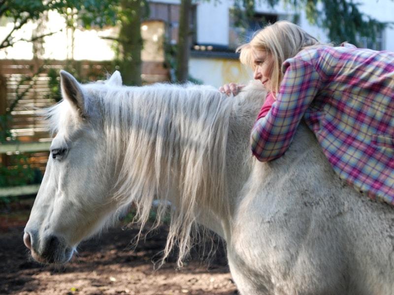Warum pferd und mensch sich gut tun pferdefreunde autorin karin mller auf dem rcken ihres pferdes altavistaventures Images