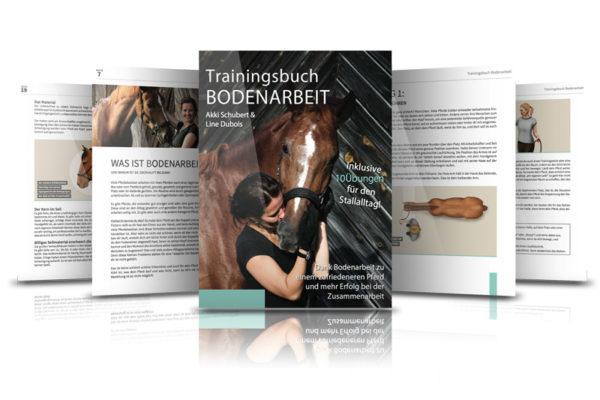 Buchcover Trainingsbuch Bodenarbeit von Akki Schubert und Line Dubois Pferd und Reiterin