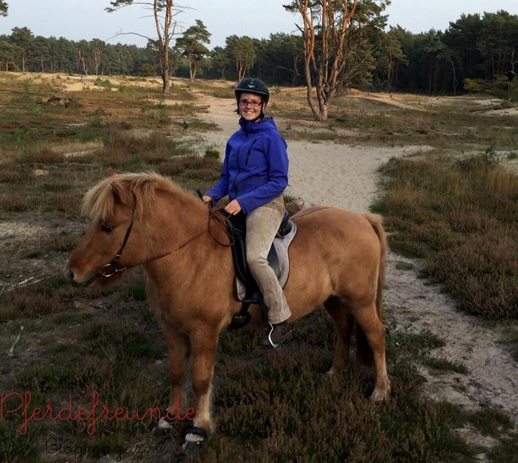 Bei langen Ausritten habe ich meinem Pferd anfangs Hufschuhe angezogen.