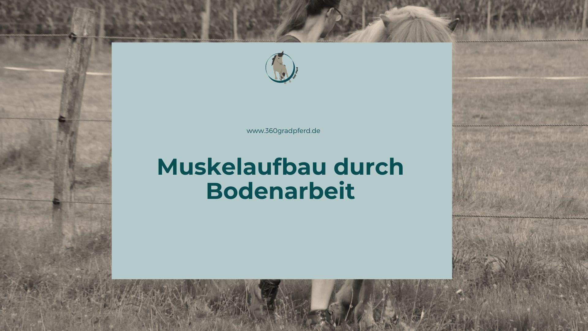 bodenarbeit übungen pferd