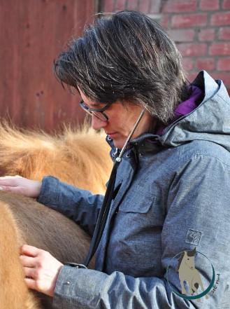 Tierärztin für Homöopathie Svenja Thiede