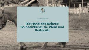 Der Einfluss der Reiterhand auf das Pferd