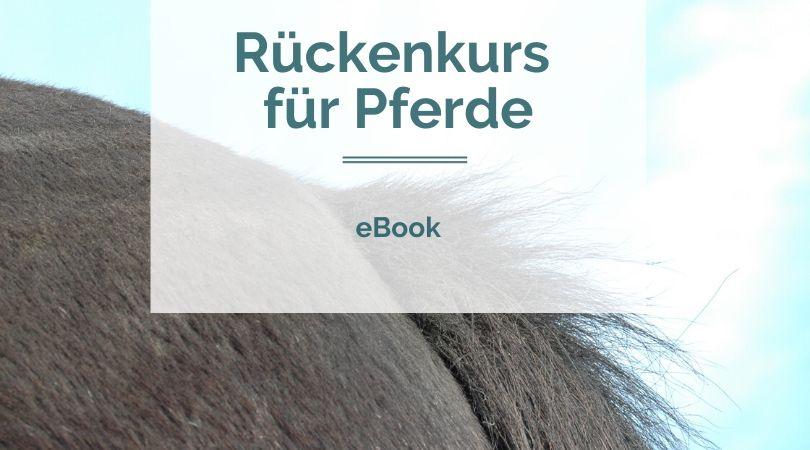 eBook Rückenkurs für Pferde