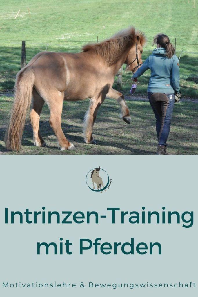 ntrinzentraining mit Pferden