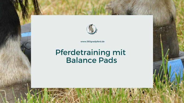 Tipps und Infos zum Pferdetraining mit Balance Pads