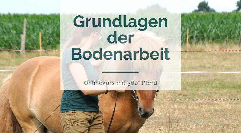 Onlinekurs Grundlagen der Bodenarbeit