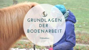 Onlinekurs Grundlagen der Bodenarbeit PDF Selbstlernkurs für Pferdebesitzer