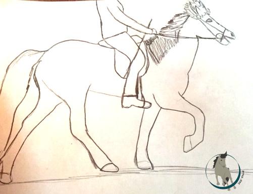 Ein Islandpferd im Tölt mit Unterhals und weggedrücktem Rücken - so sollte es nicht sein