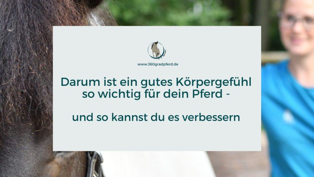 Körpergefühl und Körperwahrnehmung Pferd verbessern
