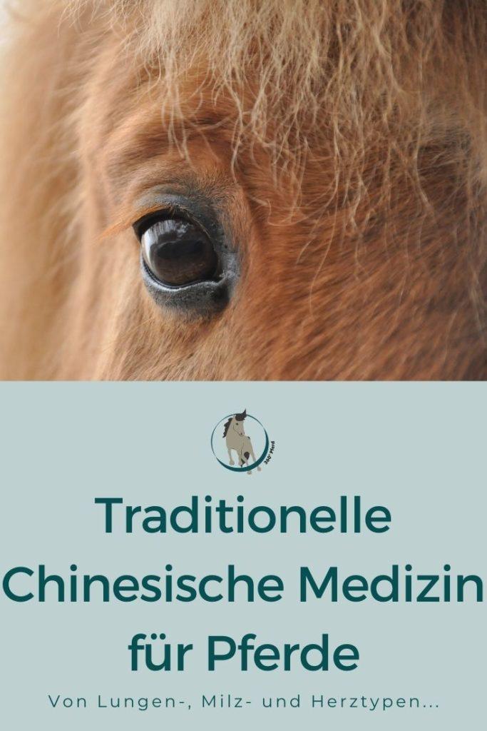 Traditionelle Chinesische Medizin für Pferde