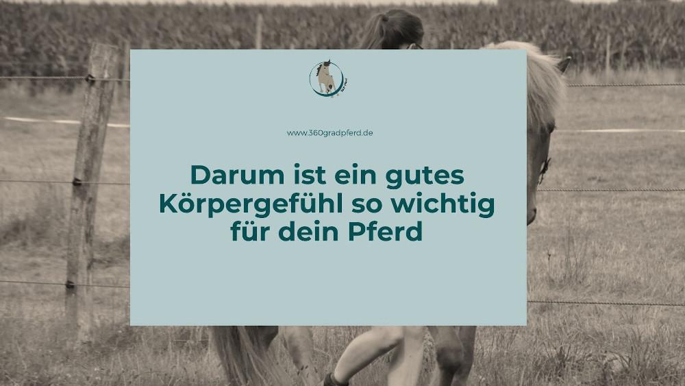 Darum ist ein gutes Körpergefühl für dein Pferd so wichtig