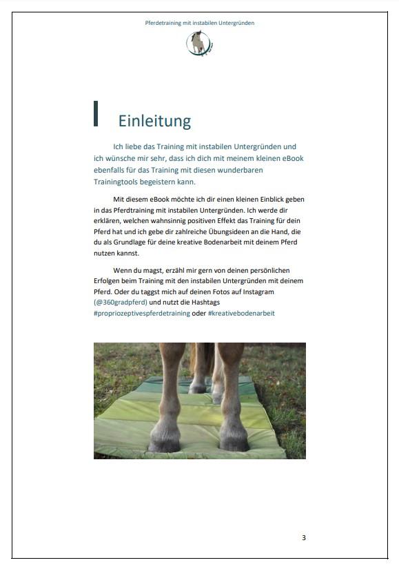 Einleitung Pferdetraining mit instabilen Untergründen