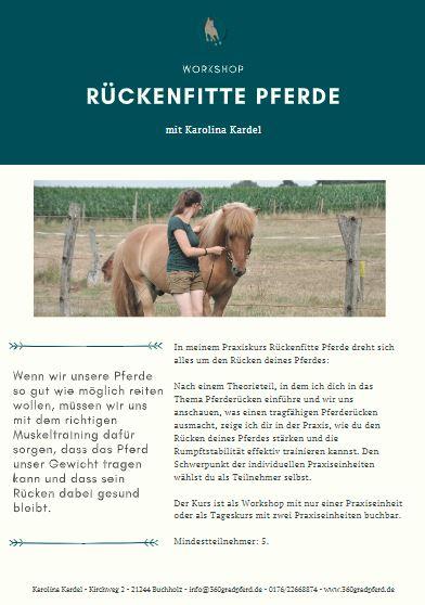 Reitkurs Rückenfitte Pferde