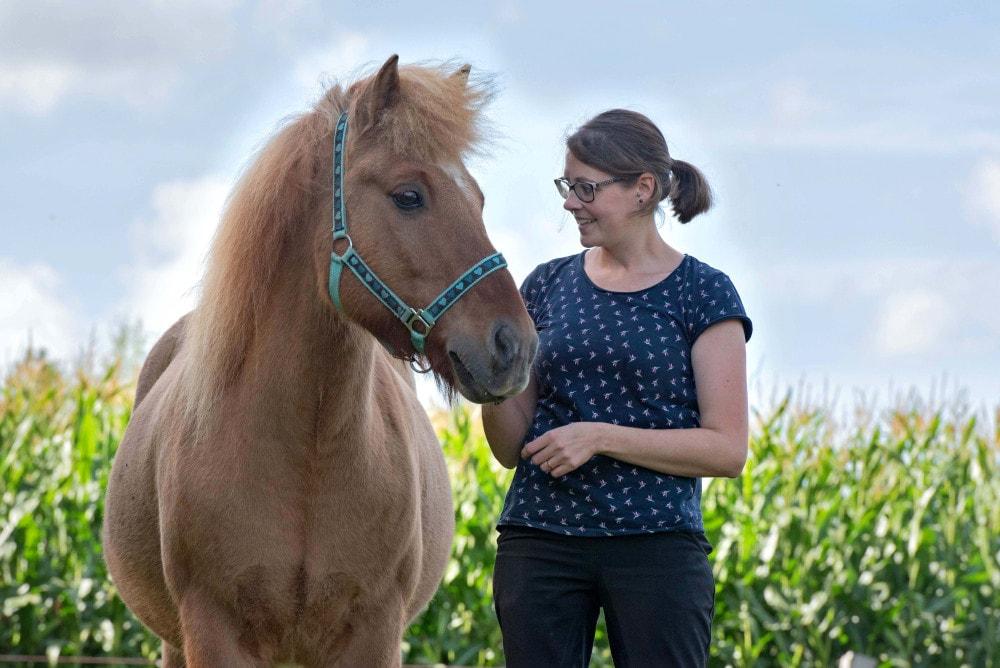 Gesunderhaltendes Pferdetraining und Pferdeergotherapie mit 360° Pferd