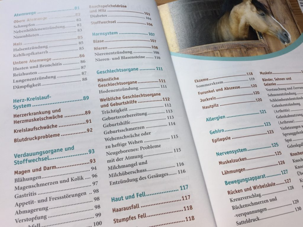 Inhalt des Buches Heilströmen für Pferde