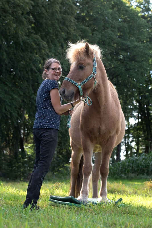 Karolina Kardel 360° Pferd