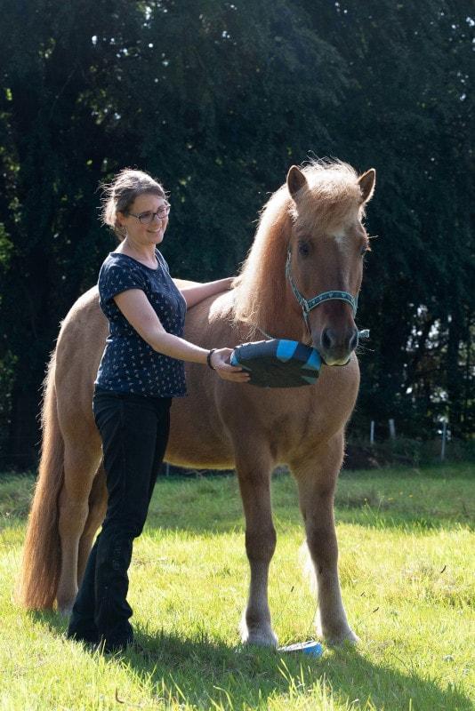 Pferdeergotherapie mit Balance Pads