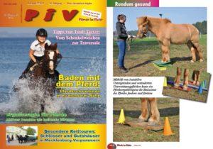 Pferde im Visier Pferdeergotherapie