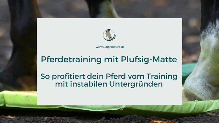 Pferdetraining mit Plufsig-Matte Wirkung instabiler Untergründe