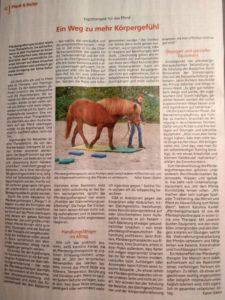 Zeitungsartikel-Bauernblatt-092019 Pferdeergotherapie
