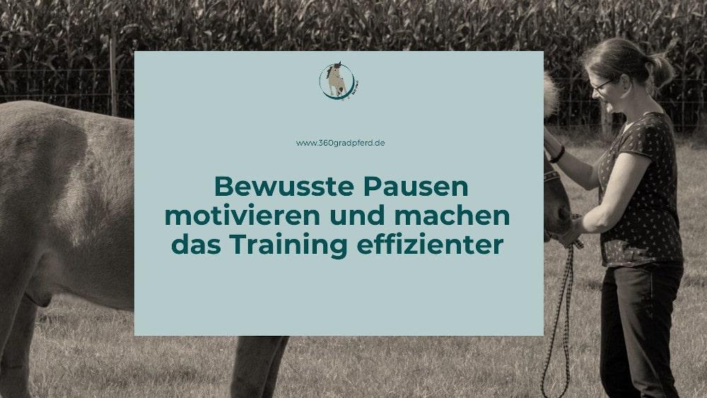 Bewusste Pausen motivieren beim Training mit Pferd