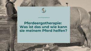 Was ist Pferdeergotherapie und wie hilft sie meinem Pferd