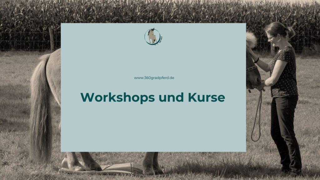 Workshops und Kurse mit 360° Pferd