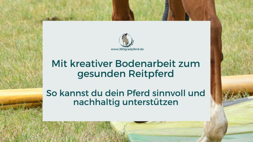 Mit kreativer Bodenarbeit zum gesunden Reitpferd