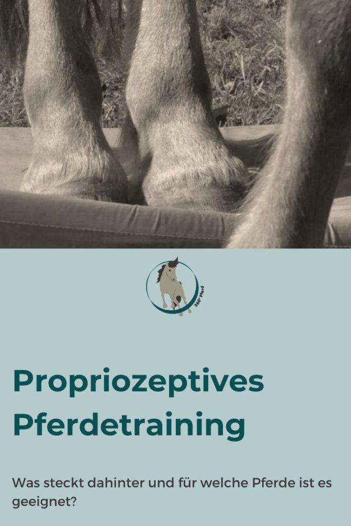 Propriozeptives Pferdetraining: Was steckt dahinter und warum ist so effektiv und sinnvoll?