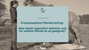 Sinn und Nutzen von Propriozeptivem Pferdetraining