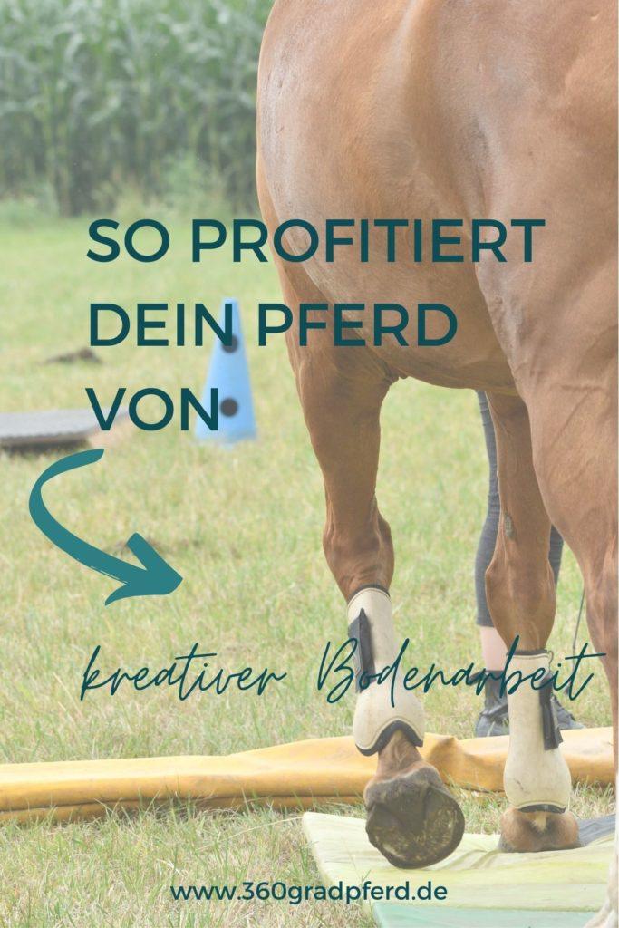 So profitiert dein Pferd von kreativer Bodenarbeit