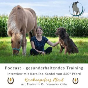 Podcastinterview Kernkompetenz Pferd Bodenarbeit