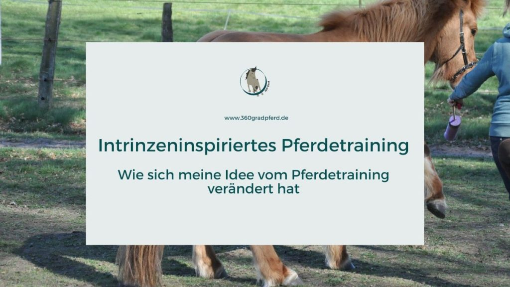 Intrinzeninspiertes Training mit Pferd