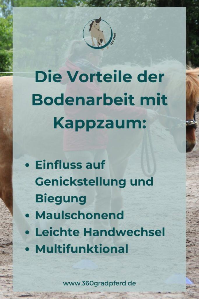 Mit einem Kappzaum hast du bei der Bodenarbeit jede Menge Vorteile: Du kannst maulschonend auf dein Pferd einwirken, Stellung und Biegung beeinflussen und spielend leicht Handwechsel vornehmen